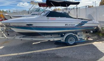 Used Larson Cutty Boat full